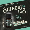 Shinobi Ice